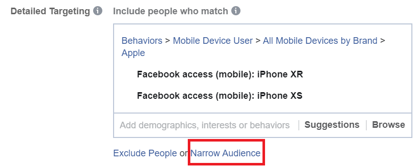 Narrow Audience in Facebook Ads Manager