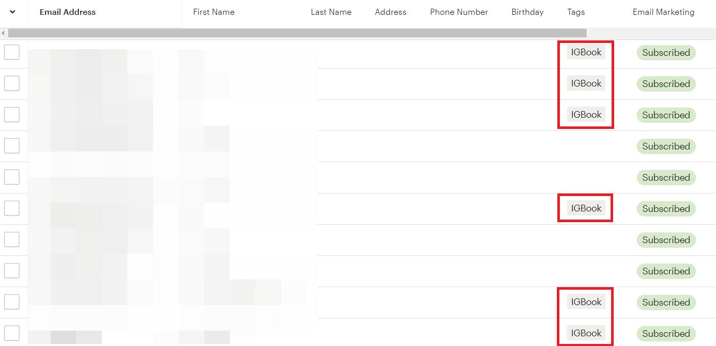 Subscriber Tag on MailChimp for segmentation